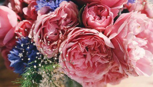 Bloemist Zwolle voor bloemen bezorgen